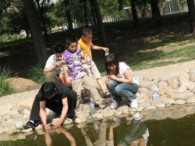 儿童水池捉小鱼图片