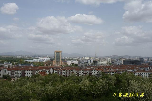 葫芦岛新区全景图