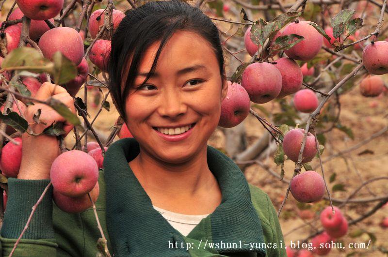 看果园的农村女孩 我的视觉生活
