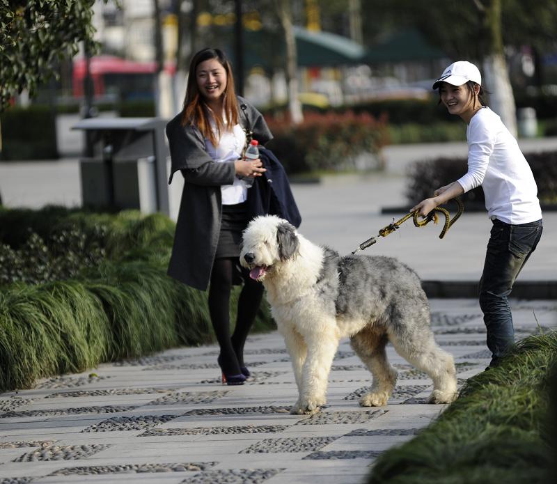 女人口述和狗狗_公狗与女人小说_和狗狗做的感觉小说_和狗狗做的小说_老婆和狗 ...