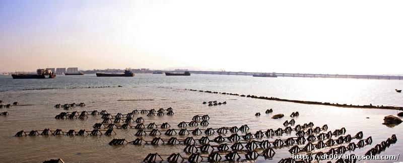 鳌园纪念碑面向大海