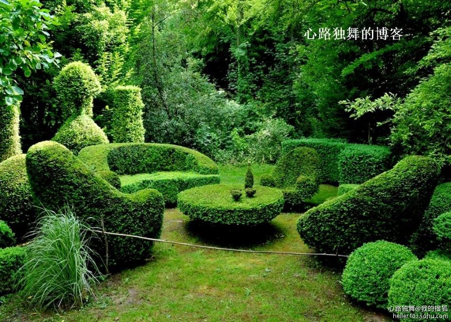 如今在美国,树木成型园艺已经深入到了普通百姓的院子里,简单的如修剪