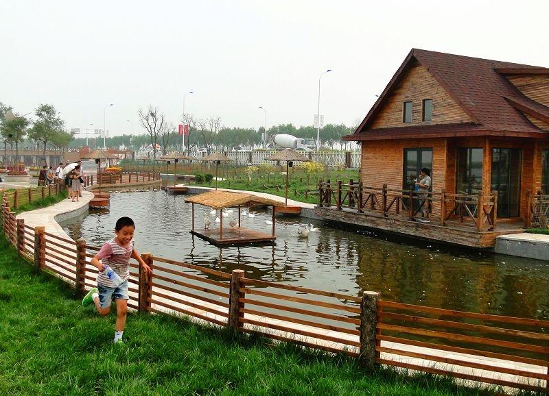 七里海湿地公园之二