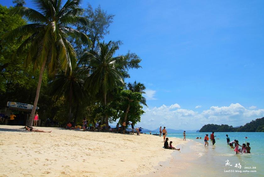 的蓝天白云,椰林树影