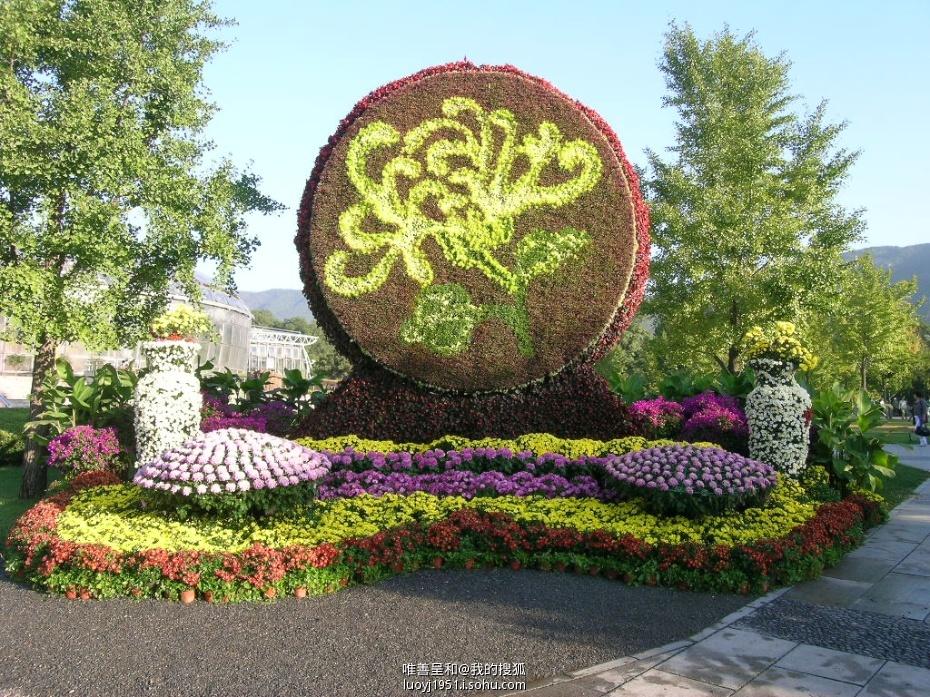 中秋主题花坛设计