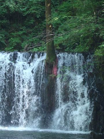 辉南三角龙湾国家森林公园(图片)--自驾游