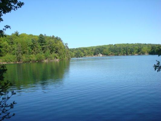 读梭罗的 瓦尔登湖