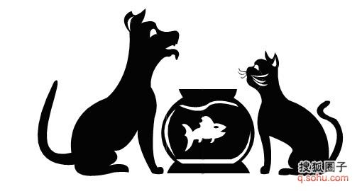 猫咪的剪贴画 猫的世界