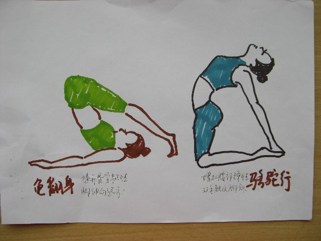 其实瑜伽的许多动作都与动物有关,比如:龟翻身,骆驼行,鹅抬头,蛇伸展&