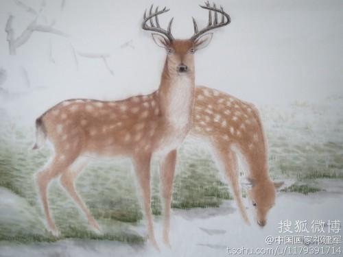 工笔鹿图创作6-顺德画家祁建军的空间-搜狐博客