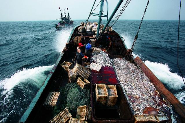 近海渔船图片_中国近海焦虑症 ——鱼类枯竭 渔业纠纷 海洋污染-《DEEP中国科学 ...