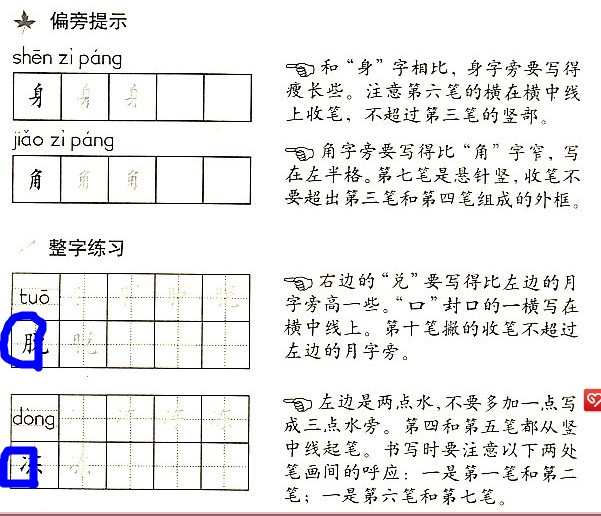 二、识字写字 1.本课要求会认的字有9个,读音难点主要有遮、触(翘舌音,遮读一声)、嫩(韵母是en不是un)。 2.可采用以下识字方法,引导学生识记生字。 (1)联系生活经验,结合动作演示认识遮、掩、躲、探。 (2)随课文朗读分散认识羞、嫩。 (3)运用熟字加偏旁或换偏旁的方法识记躲、触、鹊。 3.结合生活经验,理解羞、嫩、触等字的意思。也可通过查字典了解字的意思,但不要去照念或背字典上的解释。 4.
