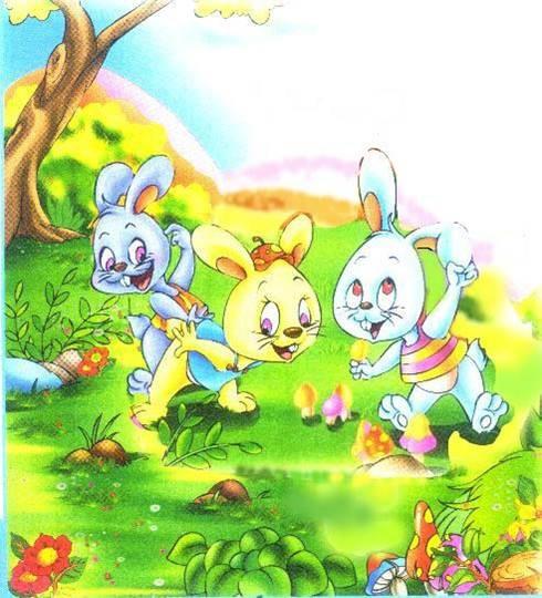小兔子跳跳跳!