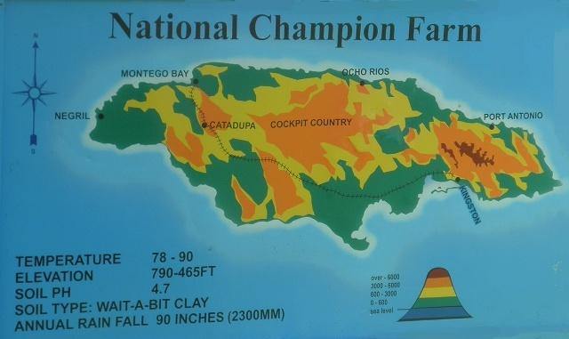 卓越蔚蓝群岛地形图